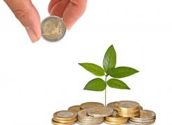 pile de pièce, investissement, argent, feuille