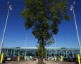 Des négociations sont en cours pour desservir l'aéroport de Liège avec des transporteurs locaux.