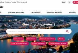 Site Wallonie.be - 2019 - page d'accueil